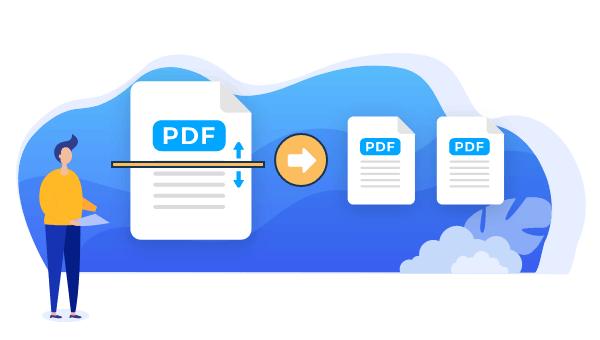 โปรแกรมเอกสาร EaseUS PDF Editor - Subscription License