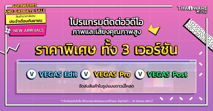 VEGAS Pro 19